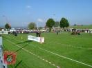Wettbewerb 2008_7